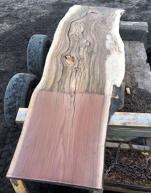 Grafted Walnut Slab
