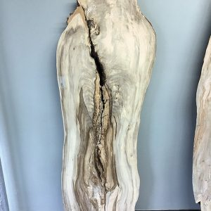 Hackberry Slab